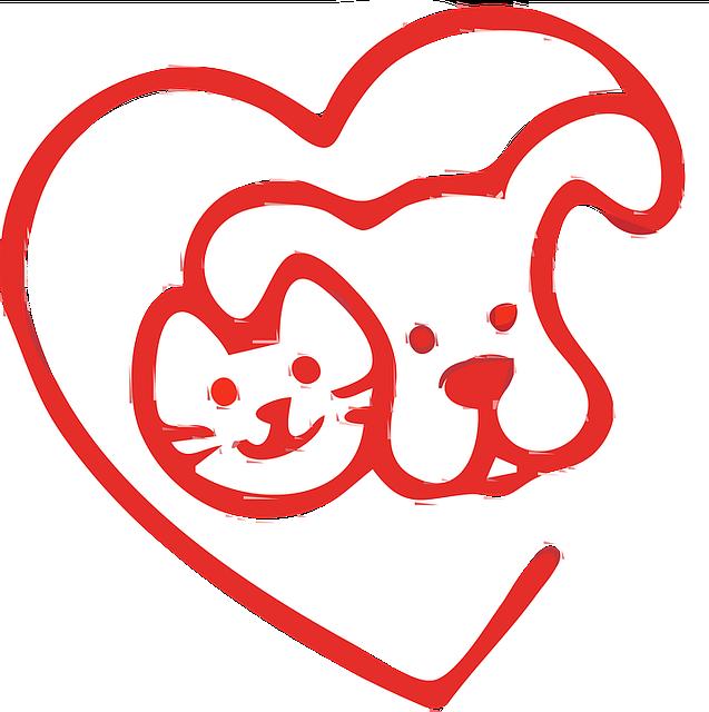 logo mazlicek